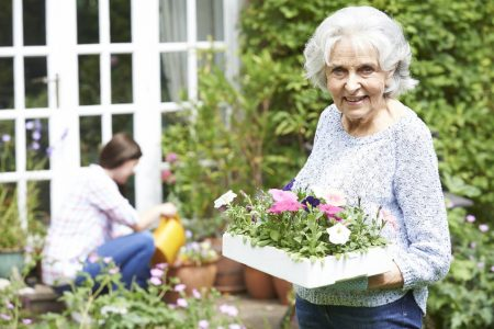 best hobbies for seniors