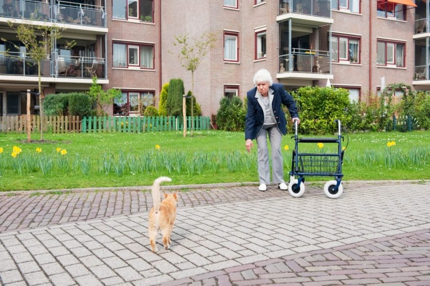 woman using a rollator outdoors
