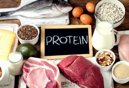 various sources of protein including meat, fish, and dairy