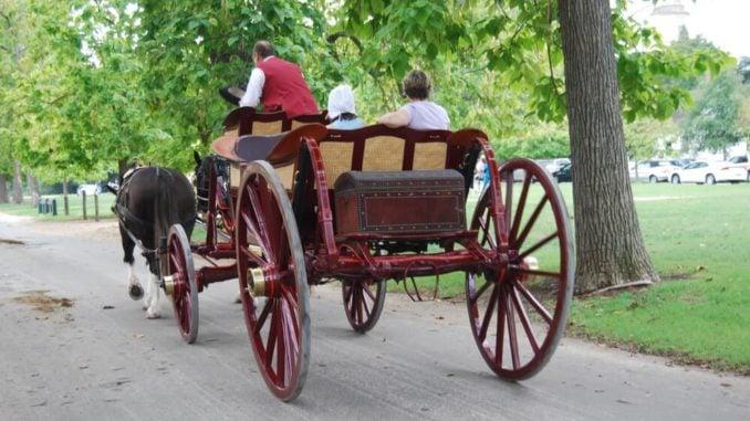 williamsburg va carriage ride