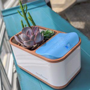 Water Generating Dewplanter by Brookstone