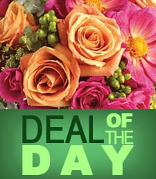 Deal of the Day Flower Gifts at Just Flowers
