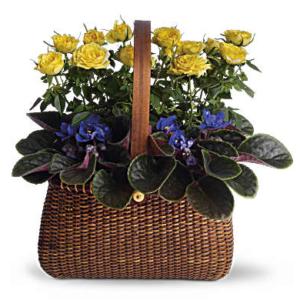 Garden To Go Basket - Teleflora
