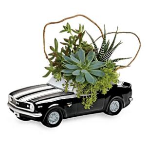 Teleflora's Chevy Camaro Plant Garden - Teleflora
