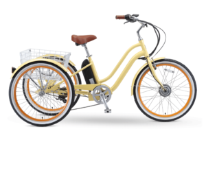 EVRYjourney Electric Tricycle by sixthreezero
