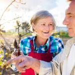 senior couple working in garden to keep mentally sharp